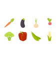 different kinds of vegetables icons in set vector image