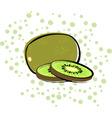 kiwifruit vector image vector image