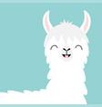 llama alpaca head face tooth smile cute cartoon vector image