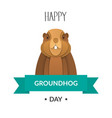 poster happy groundhog day vector image