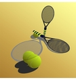 racket on a yellow backgroun vector image