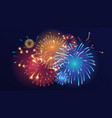 colorful fireworks on dark background vector image