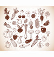 doodle fruits and vegetables sketch vector image