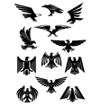 Eagle or falcon aquila or hawk heraldic badge