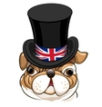 English Bulldog Emblem vector image
