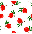 pomegranate pattern cartoon flat design vector image