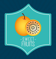 sweet fruits vector image vector image