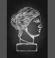 venus de milo head sculpture drawn in engraving vector image