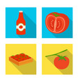 design vegetable and delicious symbol vector image