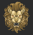 lion head angry face vector image vector image