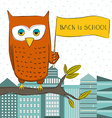 Owl Student vector image