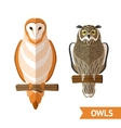 Owls Front Set vector image vector image