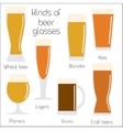 Set of beer glassware Cool minimal flat vector image