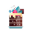 tasty dessert decorated with cream piece of vector image vector image