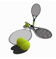 tennis rackets vector image