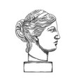 venus de milo head sculpture drawn in engraving vector image vector image