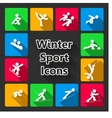 Winter sports iconset vector image vector image