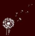 design of hand drawn dandelion flowers on dark vector image