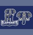 elephant mascot set vector image vector image