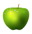 green apple fruit realistic 3d healthy vegetarian vector image vector image
