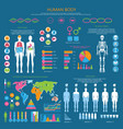 human body detailed infographic with statistics vector image vector image