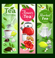 tea cups leaves teapot and sugar vector image
