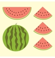 Fet of watermelon with sign flat style vector image