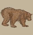 bear sketch vector image vector image