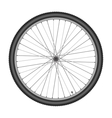 Bicycle wheel on white background