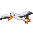 cartoon albatross flying vector image