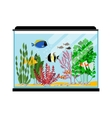 Cartoon fishes in aquarium Saltwater or vector image vector image