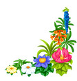 decorative corner with tropical flowers exotic vector image