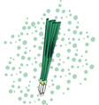 green onions vector image vector image