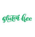 gluten free text hand drawn lettering phrase vector image