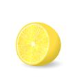 Lemon Slice Isolated vector image vector image