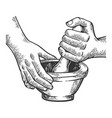 mortar and pestle engraving vector image vector image