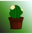 Set of cactus in a pot vector image vector image