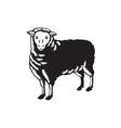 Sheep Side View Woodcut