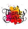 thanksgiving word on red and orange blot vector image vector image