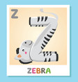 z is for zebra letter z zebra cute vector image vector image