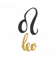 zodiac sign leo and lettering hand drawn vector image vector image