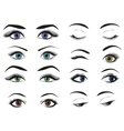 Female woman eyes and brows image collection set vector image