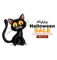 black cat halloween card black friday sale vector image