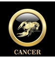 Cancer zodiac sign in circle frame vector image vector image