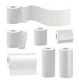 different rolls of blank toilet papers vector image