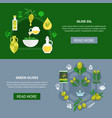 green olives horizontal banners vector image vector image