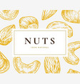 hand drawn nuts card abstract cashew vector image vector image