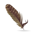 isolated feather on white background vector image