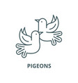 pigeons line icon linear concept outline vector image