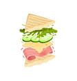 sandwich on a triangular toast vector image vector image